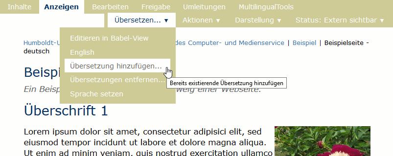 übersetzungZuweisen1